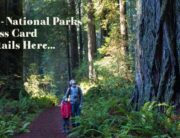 free-national-parks-pass-people-with-disabilities-v2