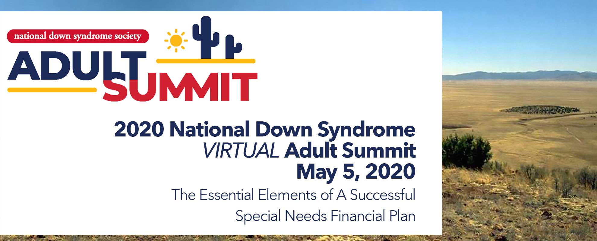2020 National Down Syndrome Virtual Adult Summit- The Essential Elements of A Successful Special Needs Financial Plan